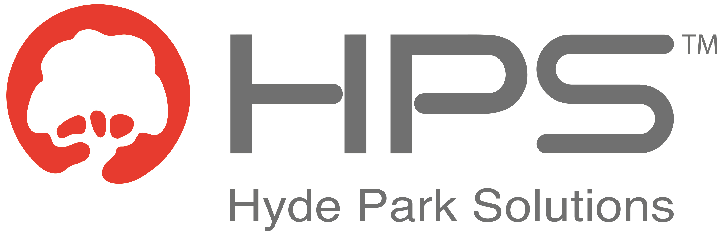 hydeparksolutions